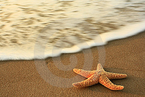 Sea Royalty Free Stock Photo - Image: 20422425