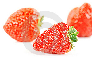 Strawberries Free Stock Images