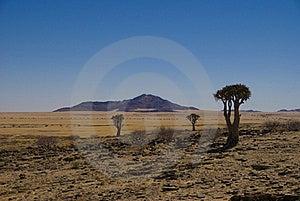 Desert Namibia Royalty Free Stock Image - Image: 20431226