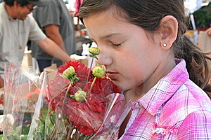 Girl Smelling Flowers Stock Photos - Image: 20433783