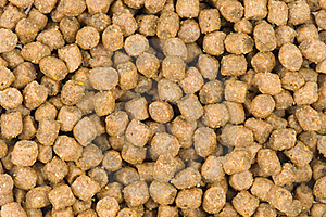 Pet Food Background Royalty Free Stock Photos - Image: 20439258