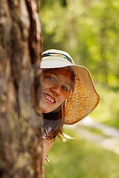 Forest Fun Stock Photo - Image: 20448690