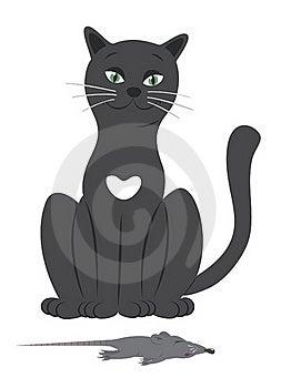Cat Stock Photos - Image: 20453773