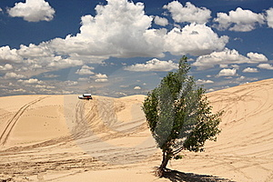 Desert Expedition Royalty Free Stock Images - Image: 20459539