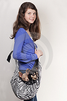 Girl With Two Dogs Royalty Free Stock Photo - Image: 20474155