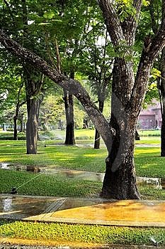 Garden State. Stock Photo - Image: 20475710