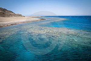 Coral Reef And Dive Site In Red Sea Stock Images - Image: 20477434