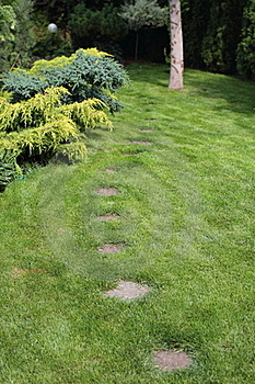 Garden Royalty Free Stock Image - Image: 20480526