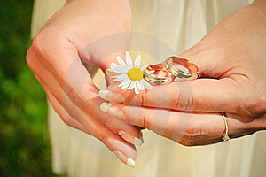 Wedding Rings On Hands Of The Bride On A Camoline Royalty Free Stock Images - Image: 20480679