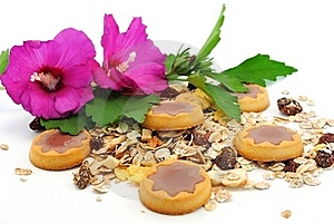 Cookies Cereals And Flowers Stock Photos - Image: 20497333