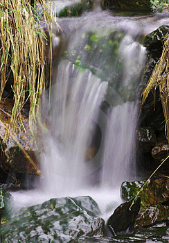 Grassy Waterfall Stock Images - Image: 2057904