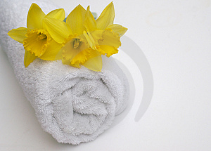 Spring Bathroom Spa Stock Photo