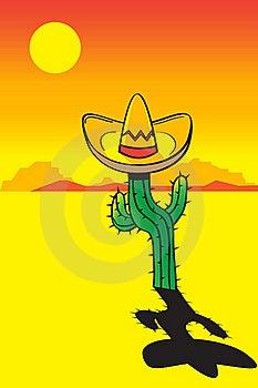 Cactus Stock Photography - Image: 20500042
