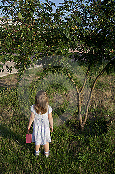 Little Girl Outdoors Royalty Free Stock Photography - Image: 20500817