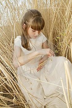 Communion Girl Royalty Free Stock Photos - Image: 20508808
