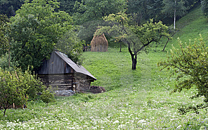Old Barn, Raw Stock Photos - Image: 20519753