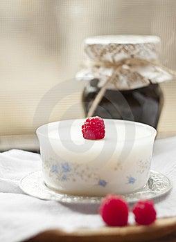 Panna Cotta Royalty Free Stock Image - Image: 20527006
