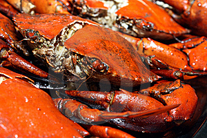 Deep-Fried Meat Crab Stock Images - Image: 20527124