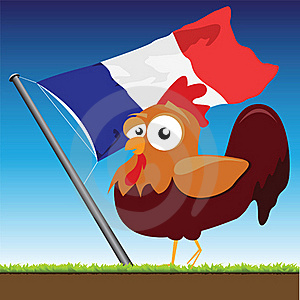 French Cock Stock Photo - Image: 20529420
