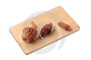 Morel Mushrooms Stock Photo - Image: 20529570