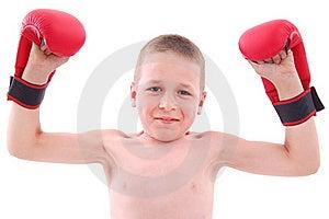 Little Boy Boxer Stock Photos - Image: 20536673