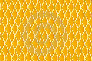 Oranges Stock Photography - Image: 20539782