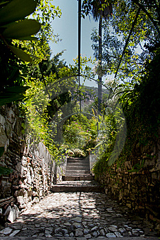 Garden Pathway Royalty Free Stock Images - Image: 20555289
