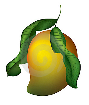 Juicy Mango Stock Photography - Image: 20567002