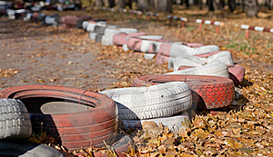 Forest Polluted With Old Tires Royalty Free Stock Image - Image: 20573416