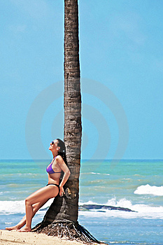 Beach Stock Photos - Image: 20579703