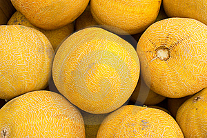 Melons Royalty Free Stock Images - Image: 20580069