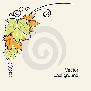 Background With Leaves And Curls Royalty Free Stock Images - Image: 20580869