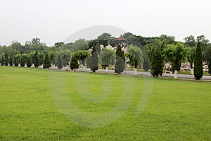 Lawn in a park