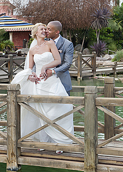 Bride And Groom In The Sunshine Royalty Free Stock Photography - Image: 20592727