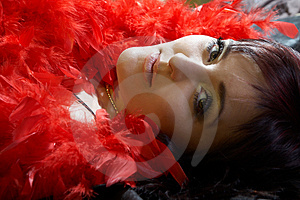 Woman Inside Plumes Royalty Free Stock Photos - Image: 2068158