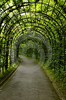 Live Tunnel Stock Photos - Image: 20621693