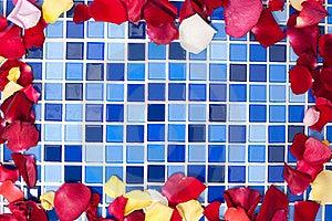 Rose Petals Royalty Free Stock Image - Image: 20623036