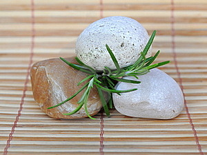 Stones And Rosemary Royalty Free Stock Image - Image: 20626906