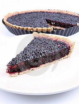 Blueberry Tart Stock Image - Image: 20636551
