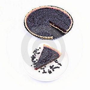 Blueberry Tart Stock Photo - Image: 20636570