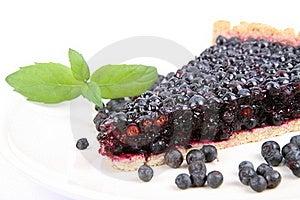 Blueberry Tart Stock Photography - Image: 20638722