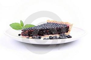 Blueberry Tart Stock Image - Image: 20638851