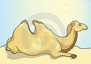 Camel In The Desert Stock Photos - Image: 20639363
