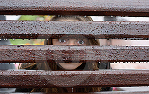 Spying Royalty Free Stock Image - Image: 20650176