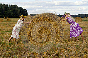 Two Blondies On Nature Royalty Free Stock Images - Image: 20650259