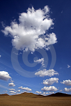Meadow Meets Sky Royalty Free Stock Image - Image: 20667986