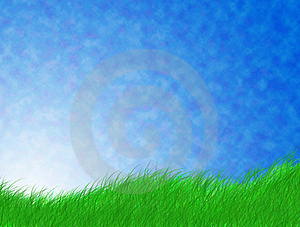 Green Grass Stock Image - Image: 20690351