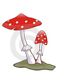 Toadstool Royalty Free Stock Photos - Image: 20700148