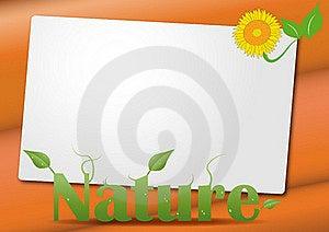 Sheet Nature Royalty Free Stock Photo - Image: 20735755