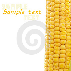 Yellow Corn On White Royalty Free Stock Photography - Image: 20742237
